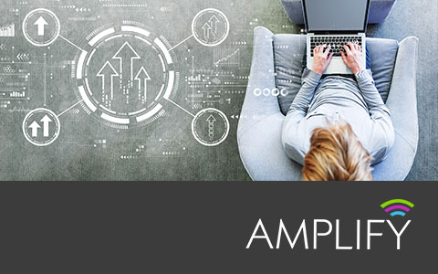 Amplify: Grow your Business for Today's Market
