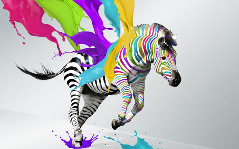 The Painted Zebra, Issue 1